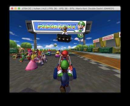 Dophin Mario Kart